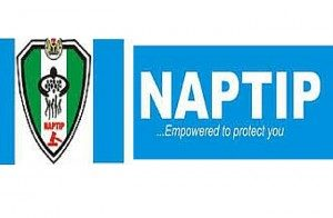 NAPTI-300×196-300×196